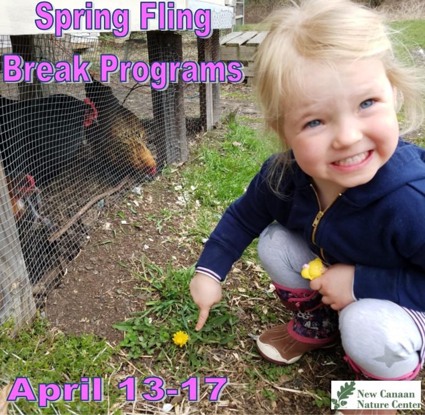 spring fling2020