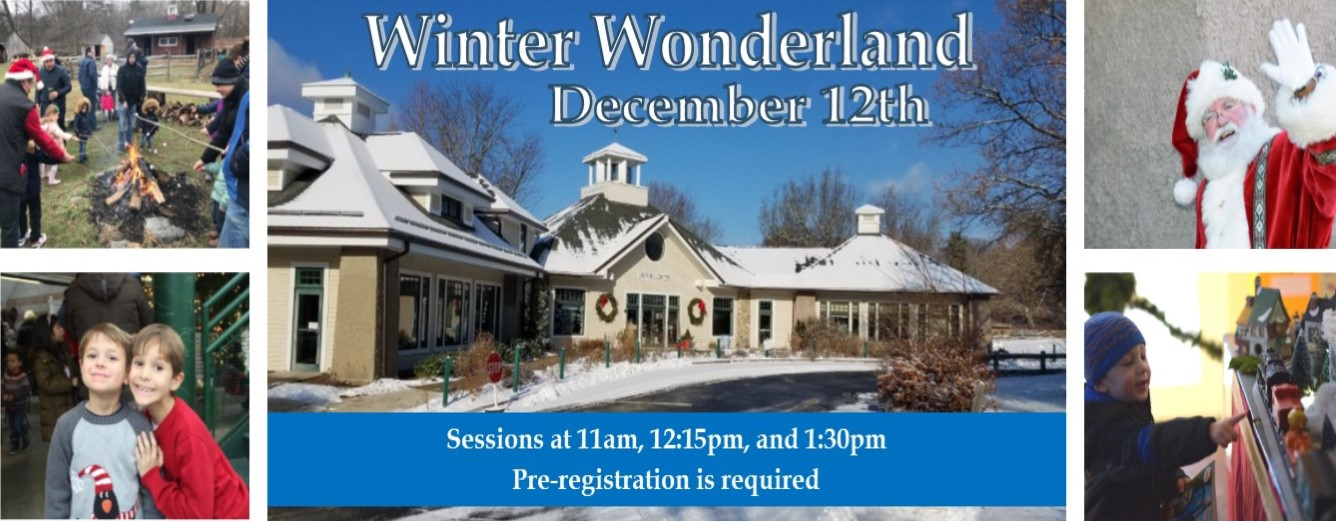winter wonderland 2020 ZPkZE3.tmp