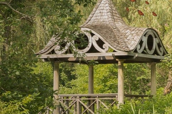 Nature Oriented Events in New Canaan